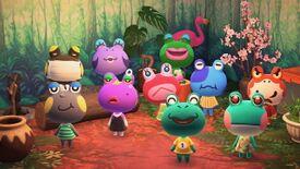 NH Frogs.jpg