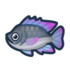 Tilapia NH Icon.png