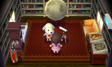 Interior of Daisy's house in Animal Crossing: New Leaf