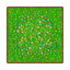 Wildflower Floor PC Icon.png