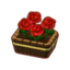 Potted Red Roses