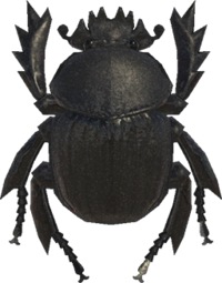 Artwork of Dung Beetle