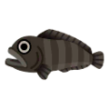 Bering Wolffish PC Icon.png