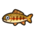 Golden Trout NH Icon.png