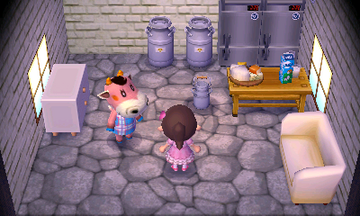 Interior of Norma's house in Animal Crossing: New Leaf